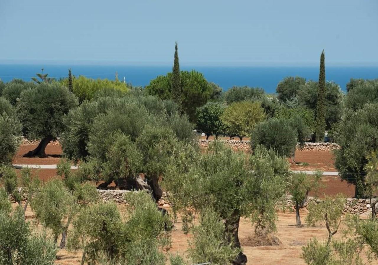Masseria with private pool in Puglia