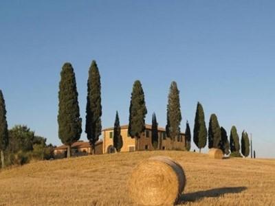Tuscany Web