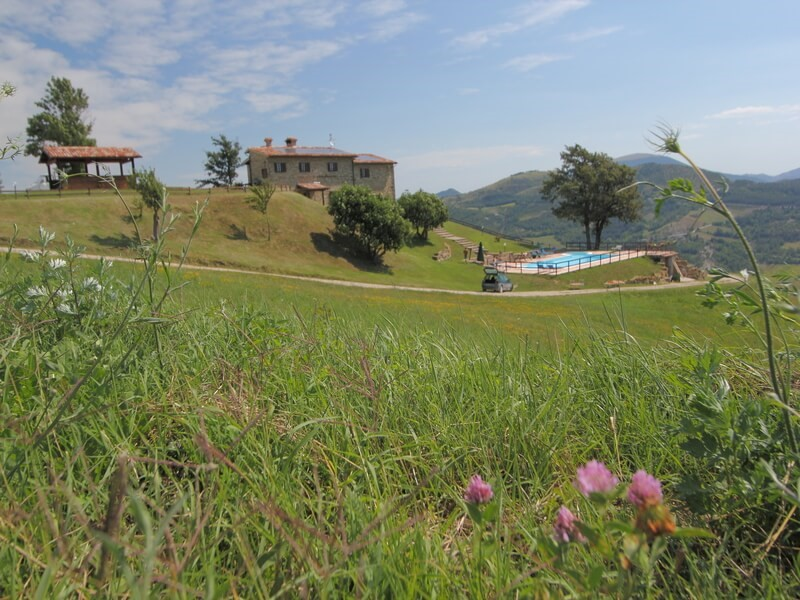 Apartment for 8 inside large villa for groups in Le Marche countryside